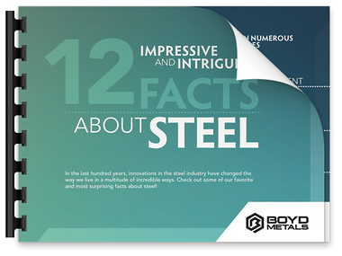 12 Facts about Steel Download Preview